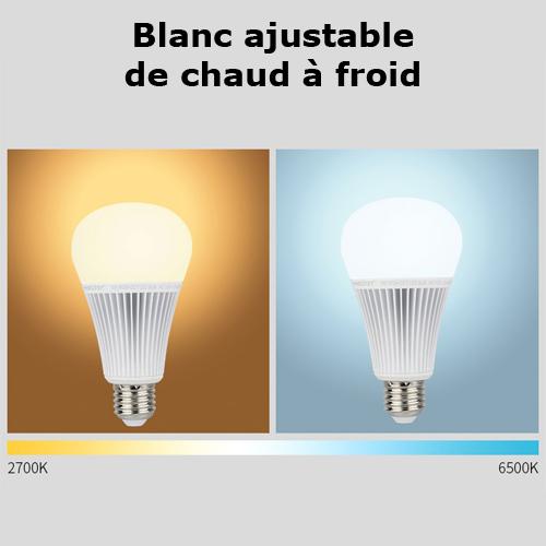 ampoule E27 RGB blanc variable 9W pic3