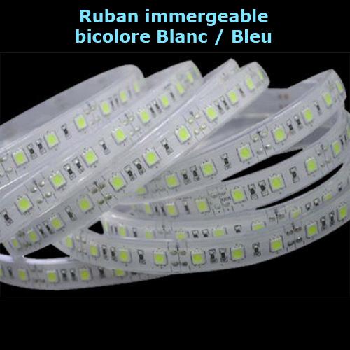 ruban led IP68 bicolore blanc bleu