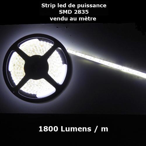 ruban led SMD2835 120 led m vendu au metre