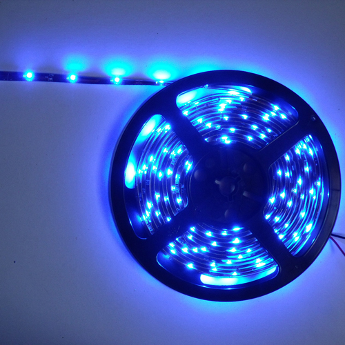 strip led economique bleu 30 standard